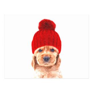 Cocker spaniel puppy with cap portrait postcard