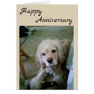 COCKER SPANIEL WITH BEER-HAPPY ANNIVERSARY CARD