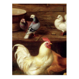 Cockerel Hen And Chicks With Pigeons Farm Animals Postcard