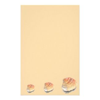Cockle seashell, orange and yellow from the Beach Stationery