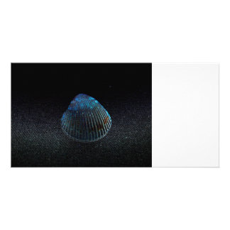 cockle shell back dark seashell beach image personalized photo card