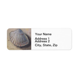 Cockle Shell Beach Seashell