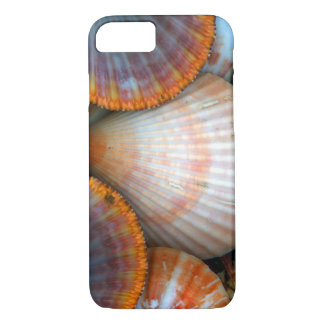 Cockleshell iPhone 8/7 Case