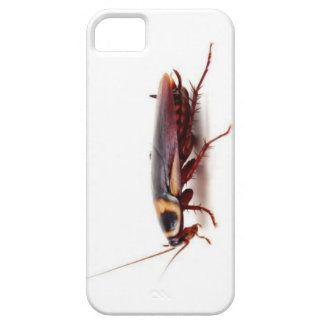 Cockroach funny gifts v2 case for the iPhone 5