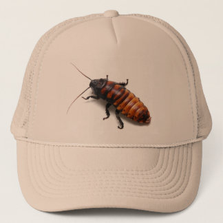 Cockroach Hat