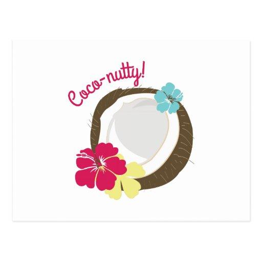 Coco-nutty Postcard