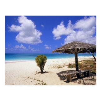 Coco Point Beach, Barbuda, Antigua Postcard