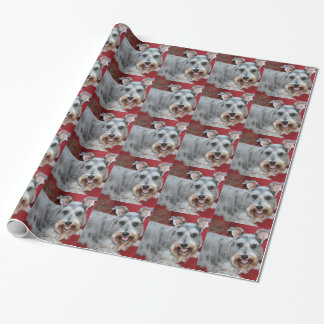 Coco, the mini schnauzer, gift wrap. wrapping paper
