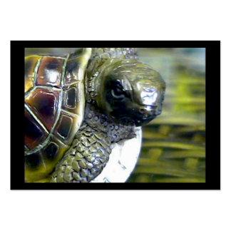Cocoa Beach Fl Turtle Egg Art1 jGibney ACT-Open Ed Business Card Templates
