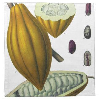 Cocoa bean vintage illustration printed napkin
