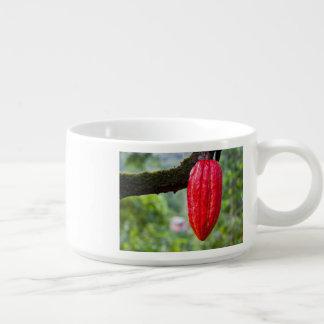 cocoa pod red bowl