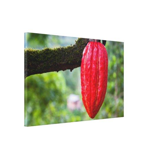 cocoa pod red canvas print