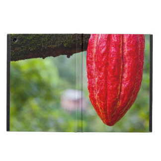 cocoa pod red iPad air case