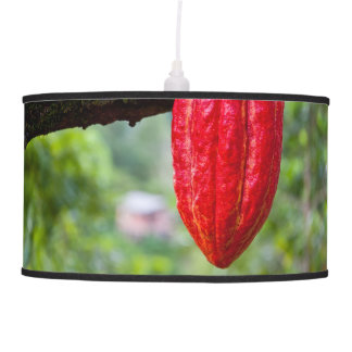 cocoa pod red pendant lamp