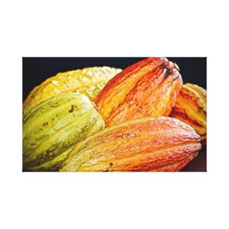 Cocoa Pods ~ Cacao ~ Trinidad Cocoa Canvas Print