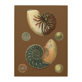 Cocoa Shell Wood Wall Decor