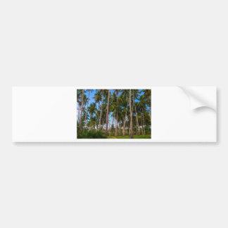 Coconut Jungle Paradise Bumper Sticker