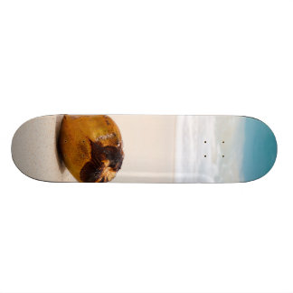 Coconut on a tropical beach skateboard decks