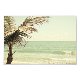 Coconut Palm and Pastel Beach Photography Photo Print