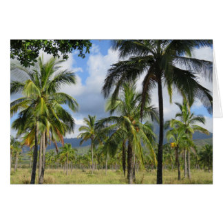Coconut Palm Forest Card