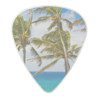 Coconut palm trees (Cocos nucifera) swaying in Acetal Guitar Pick