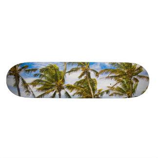 Coconut palm trees (Cocos nucifera) swaying in Custom Skate Board