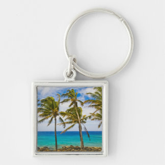 Coconut palm trees (Cocos nucifera) swaying in Silver-Colored Square Keychain