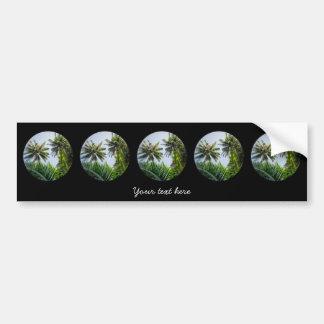 Coconut palms bumper sticker