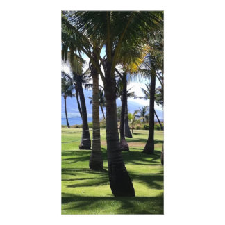 Coconut Palms Nui Hawaii Custom Photo Card