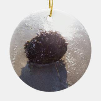 Coconut Round Ceramic Ornament