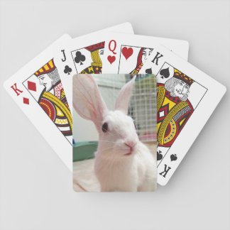 Coconut Sam Playing Cards