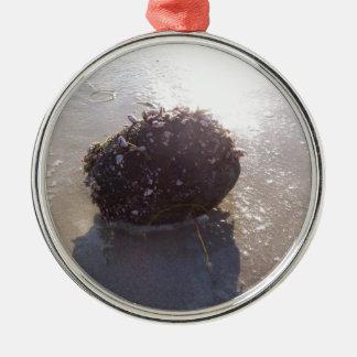 Coconut Silver-Colored Round Ornament
