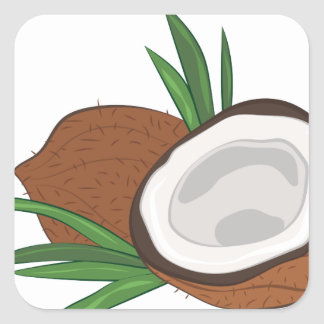 Coconut Square Sticker