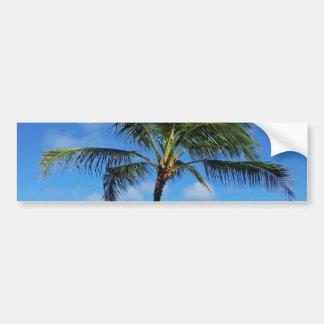 Coconut Trees Bumper Sticker