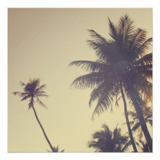 Coconut Trees Trendy Hipster Desaturated Summer Poster