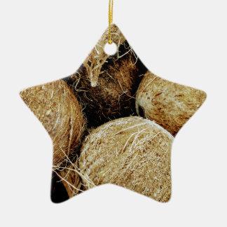 Coconuts Ceramic Ornament
