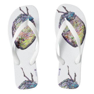 CoCoNuTs! In Amazingly Detailed Watercolors Flip Flops
