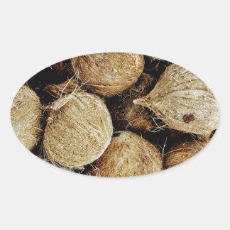 Coconuts Oval Sticker
