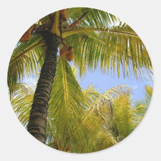 Coconuts Round Sticker