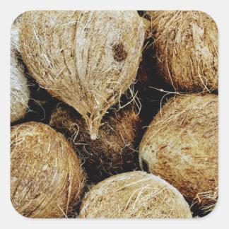 Coconuts Square Sticker