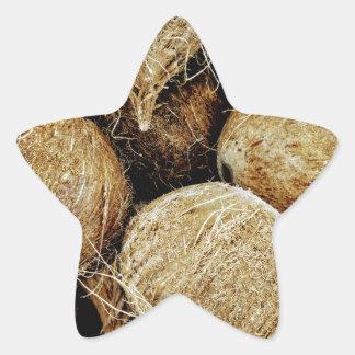 Coconuts Star Sticker
