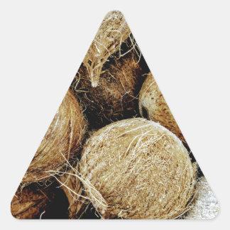 Coconuts Triangle Sticker