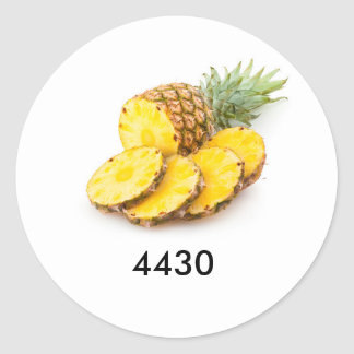 Code for pineapple classic round sticker