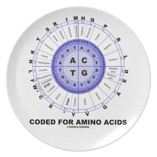 Coded For Amino Acids (Genetic Code DNA) Plate