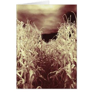 Codgers in the Corn Card