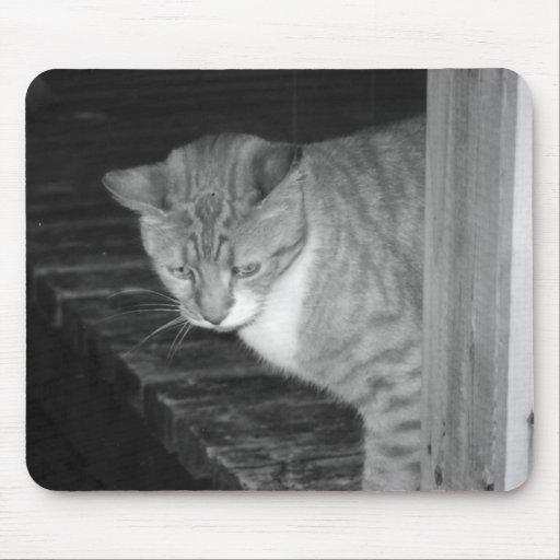 Cody Mousepad Tapis De Souris