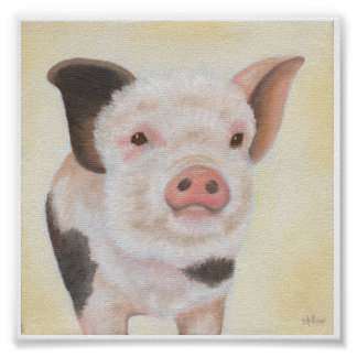 Cody the Piglet square poster print