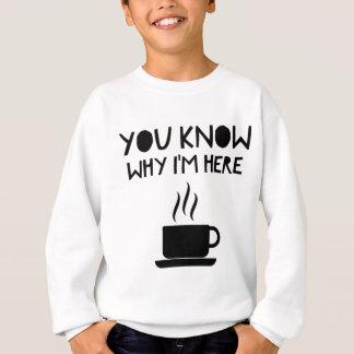 Coffee AA Anonymous Drunk Fellowship Sweatshirt