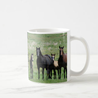 Coffee Cup  - Mares & Foals