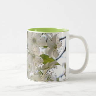 Coffee Mug - Blooming Bradford Pear